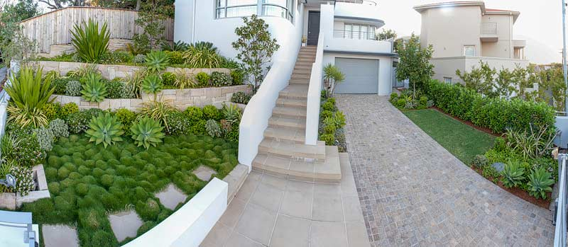 Earlwood inner west groundcover landscaping and garden design by Bell Landscapes, Sydney.