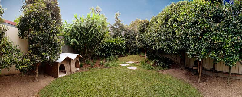 Lilyfield backyard landscaping garden design by Bell Landscapes, Sydney