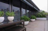 Pyrmont penthouse garden design by Bell Landscapes, Sydney