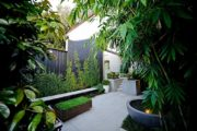 Waterloo garden design with vertical garden and creepers by Bell Landscapes, Sydney