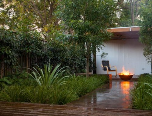 Randwick – Garden Design