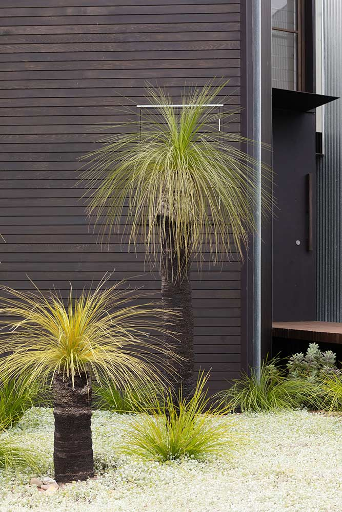 Longueville Iron Maiden house landscaping and garden design by Bell Landscapes, Sydney.