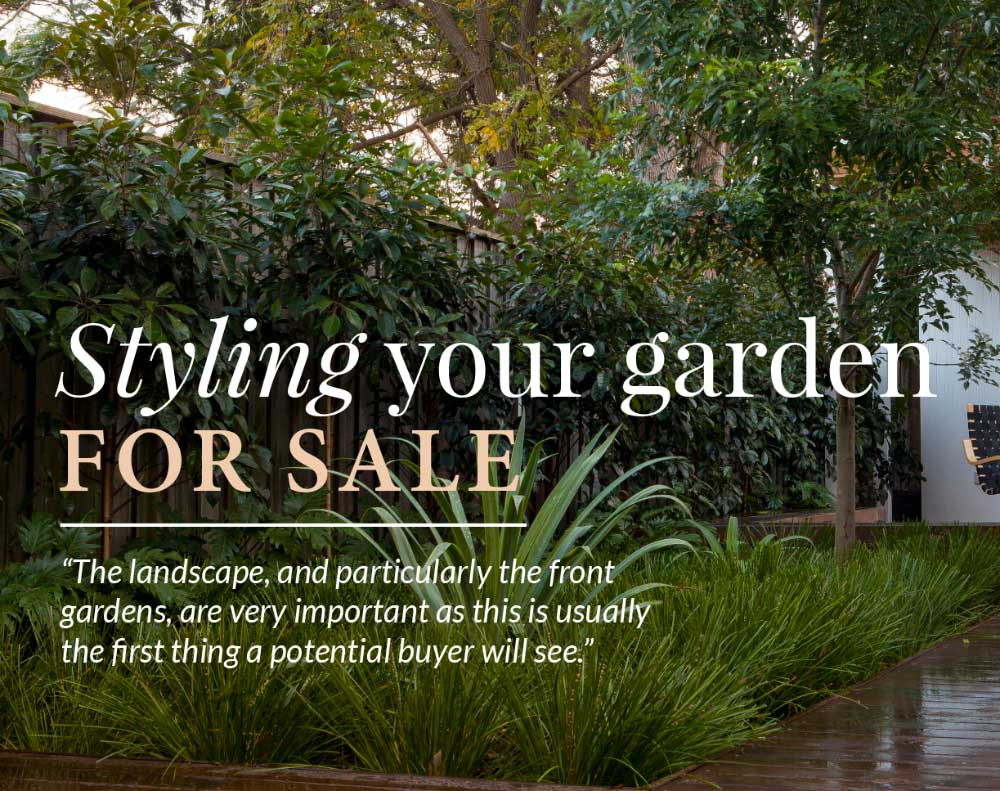 Styling your garden for sale - article by Mark Bell featured on Ray White