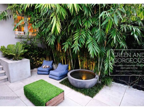 Waterloo courtyard featured in Outdoor Rooms magazine